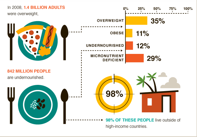World Hunger Organization Statistics About Food Insecurity